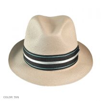 Sleek Fedora Hat