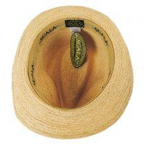 Striped Band Raffia Straw Fedora Hat in
