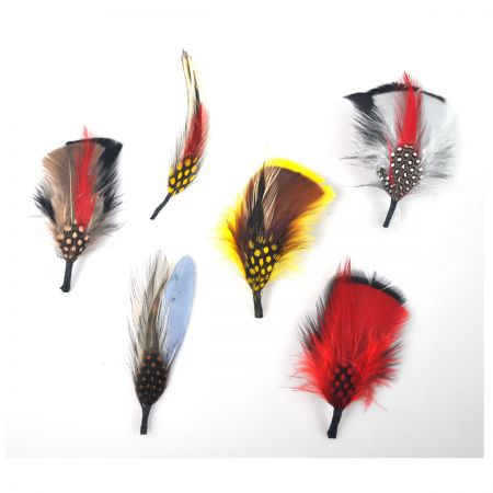 Capas Headwear Assorted Side Feather 6 Pack