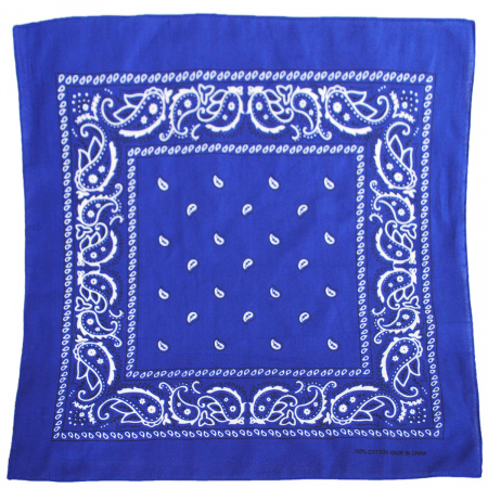 Printed Cotton Bandana alternate view 15