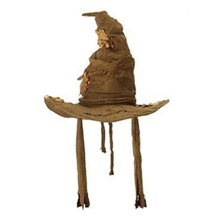Harry Potter Sorting Witch Hat