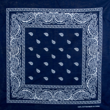 21.5 inch Printed Cotton Bandana