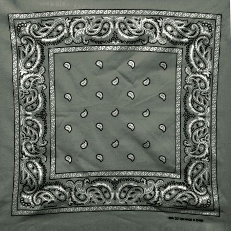Printed Cotton Bandana alternate view 6