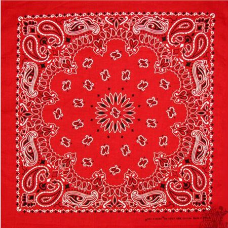 Printed Cotton Bandana alternate view 14