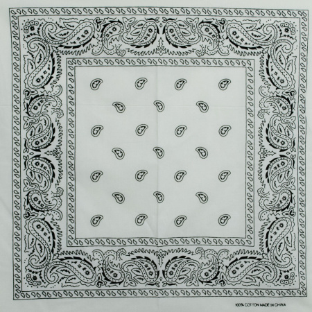 Printed Cotton Bandana alternate view 18