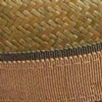 Size: XL - Lichen
