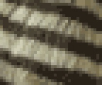 SIZE: M - Striped