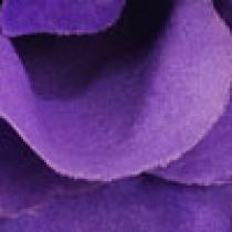 SIZE: L - Purple
